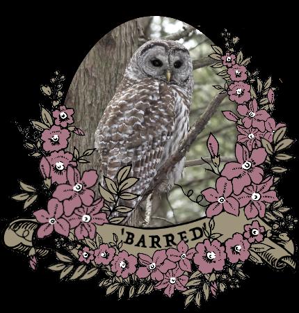 barred_by_myserpentine-d9c258n.png