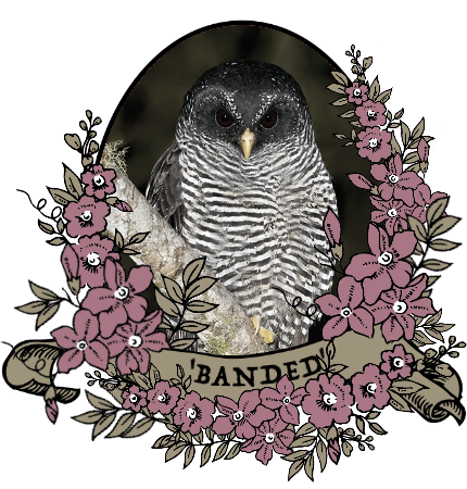 banded_by_myserpentine-d9c25b2.png