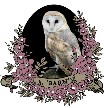 barn_by_myserpentine-d9c25bt.png