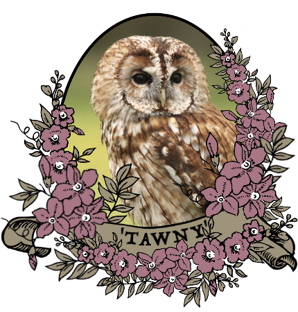tawny_by_myserpentine-d9c25cl.png