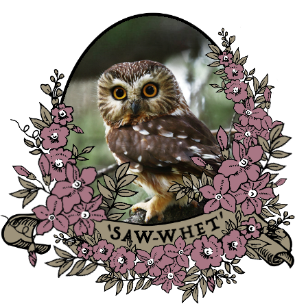 saw_whet_by_myserpentine-d9m61po.png