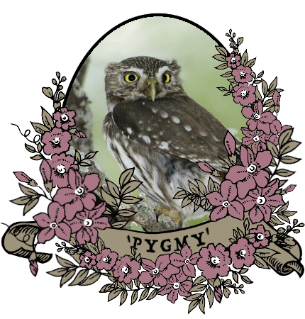 pygmy_by_myserpentine-d9mu0vt.png