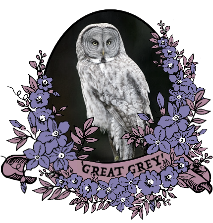 greatgrey_by_myserpentine-d9osev4.png