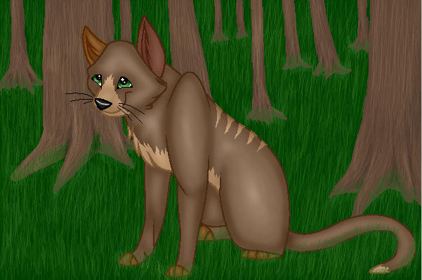 Contest Entry 2-Wildear of TC by StarClan