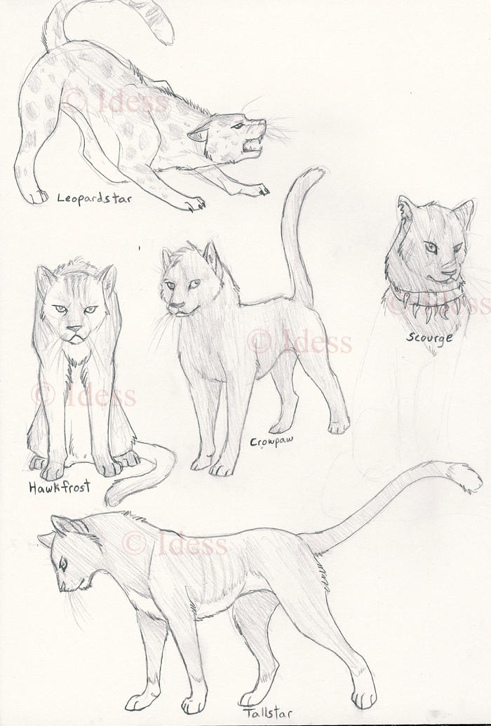 warrior cats coloring pages starclan - photo#1