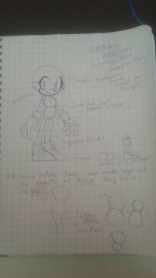 Female Mobian Anatomy Tutorial by PaperBananaSkillz on DeviantArt