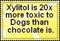 Toxic to pets by JediSenshi