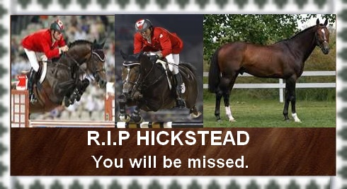 Hickstead R.I.P. by JediSenshi