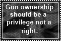 Gun Ownership by JediSenshi