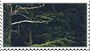 Trees Stamp v2