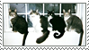 Cats In The Window Stamp by CRIMlNALS