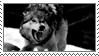 Growling Wolf Stamp by G0REH0UND