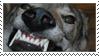 Teefs Stamp