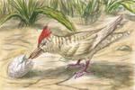 Egg woodpecker