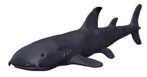 bulldog shark model 2