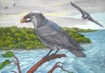 Mangrove crow