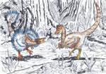Raptor dance