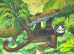 Hanging lemur (Scyolemur quadrimanus)