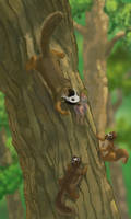 Mask-forelocked squirrel