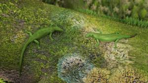 One-colour viviparous lizard