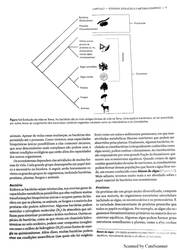 Novo Documento 2018-03-03 pages-to-jpg-0012 by LUKAZTER