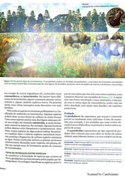 Novo Documento 2018-03-03 pages-to-jpg-0016 by LUKAZTER