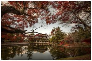 Temple's Todai-ji Nara by Graphylight