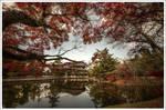 Temple's Todai-ji Nara