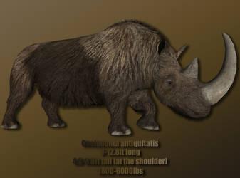 Woolly Rhinoceros Profile by Davidy12