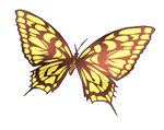 Butterfly PNG #1