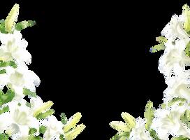 Flower PNG #2 by INDIGOgfxs