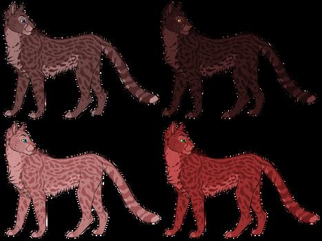 Cheetah Adopt Sheet 1 (1/4) OPEN