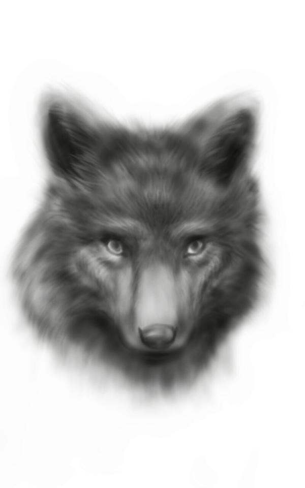 Dog Portrait by razhbi