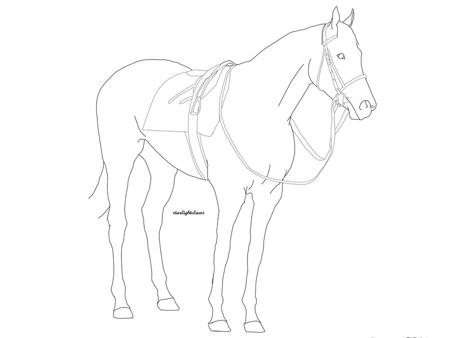 Line Art Gimp : Standing horse sketches imgkid the image kid