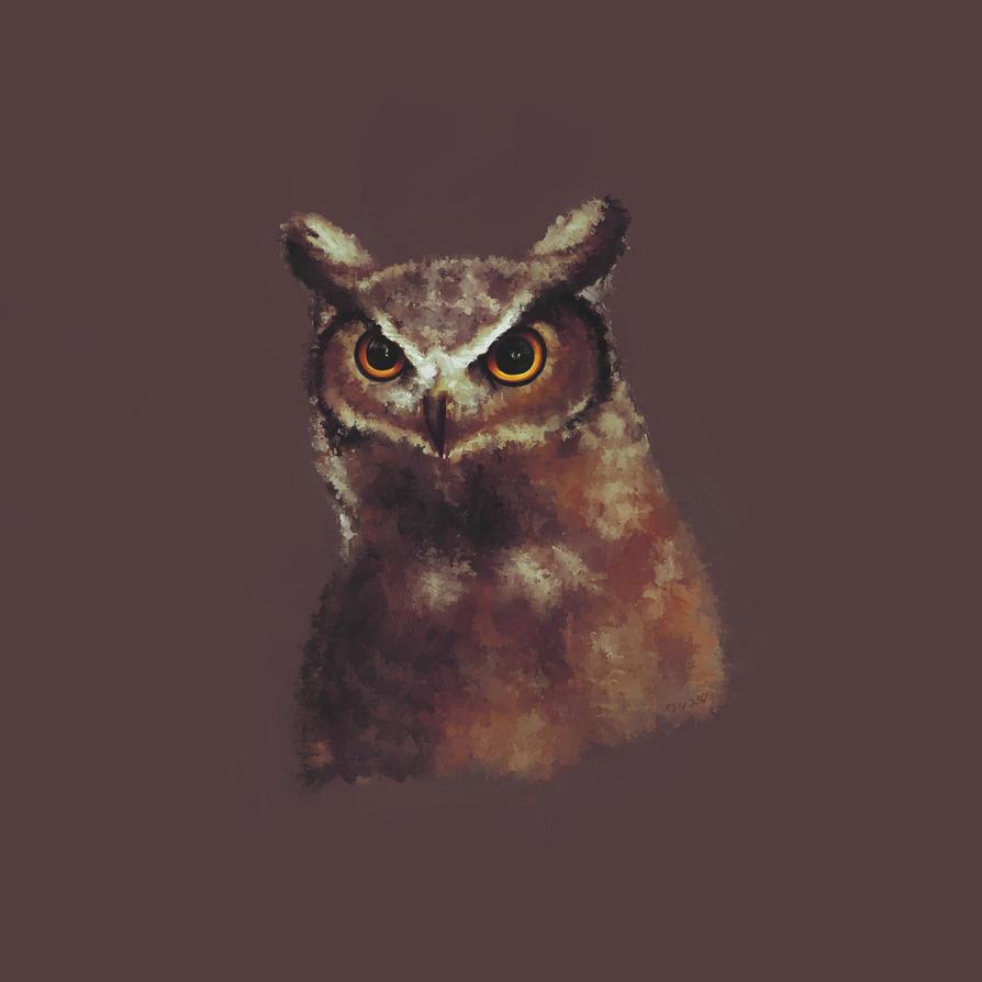Owl by KaoruMorite
