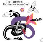 Anatomy of the Tatzlwurm