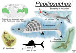 Papiliosuchus