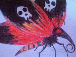 butterfly of death by bushbasher01