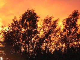 Burning Sky by UniMatrixZero