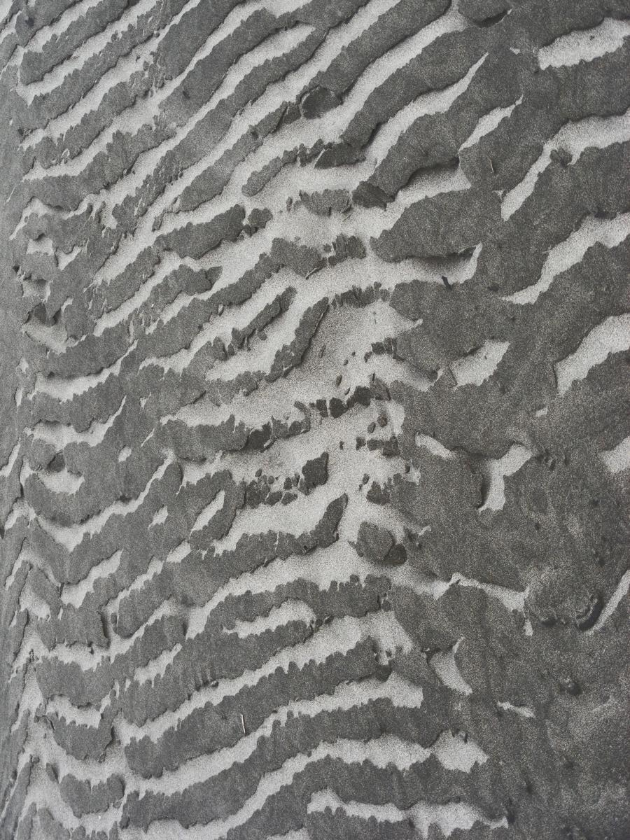 Zebra Sand by GlamRockCephalopod