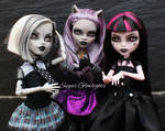 Monster High 13 Wishes shadow ghouls