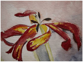 Tulips-detail