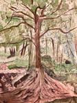 Puzzlewood Tree