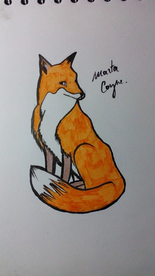 Fox by MCoyne