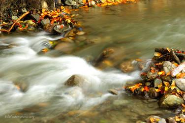 Translucent Stream by bilaluzun