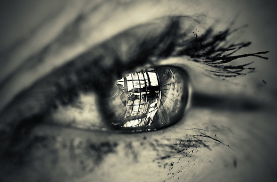 macro eyes by mario-10