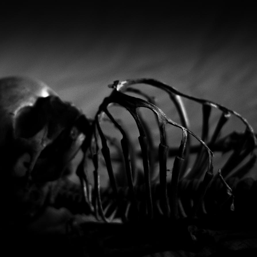 Rigor Mortis by O-Renzo