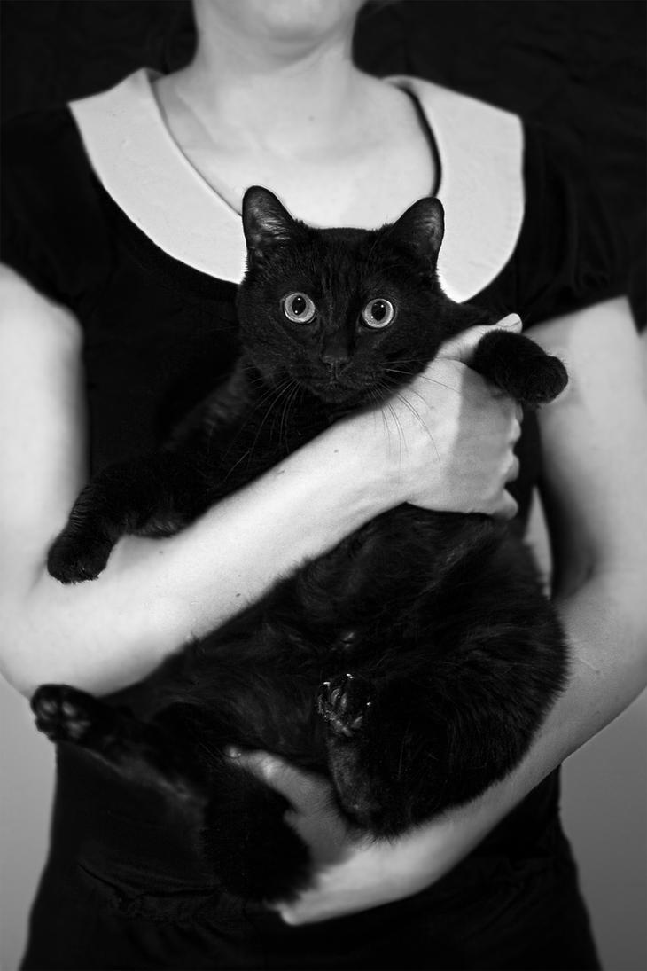 Devienart Black Cat Steampunk