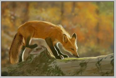 Old art - fox