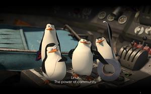 Linux Penguins Wallpaper by masterkira009